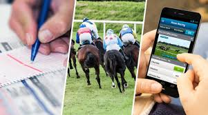 Horse Race Betting Guide for New Zealand Punters