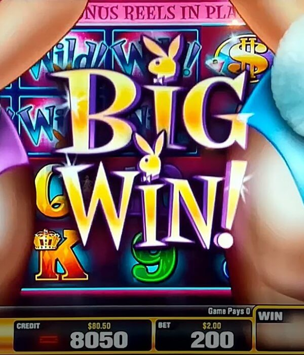 Playboy Hot Zone Slot Review & Guide for Players